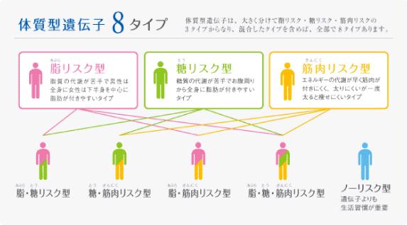 体質的遺遺伝子8タイプ