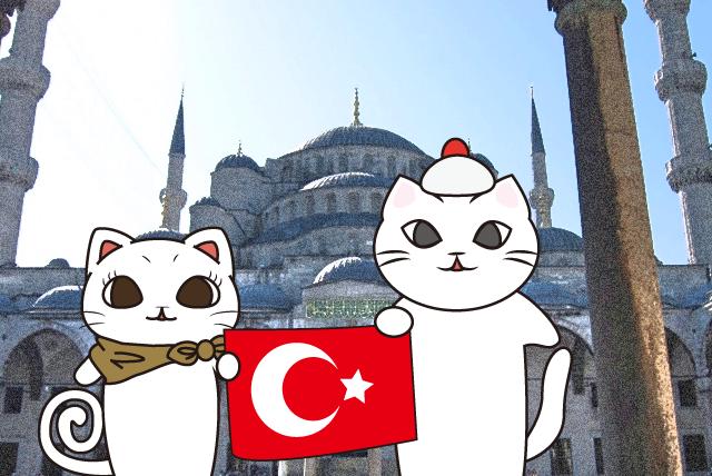 ニャるほど、トルコ美術史