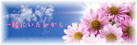 ピンクのお花。
