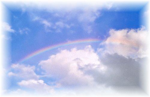 虹の橋の写真