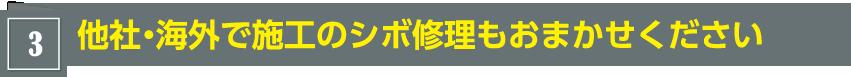 [3]他社・海外で施工のシボ修理もおまかせください
