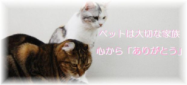 ペットは大切な家族。心からありがとう。埼玉県川口市の川口ペット火葬ひかり。
