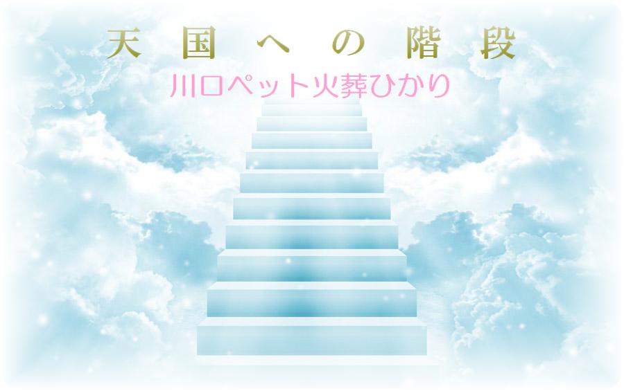 亡くなったペットが天国への階段を上がって虹の橋を渡り天国へ行ける階段。川口ペット火葬ひかり。