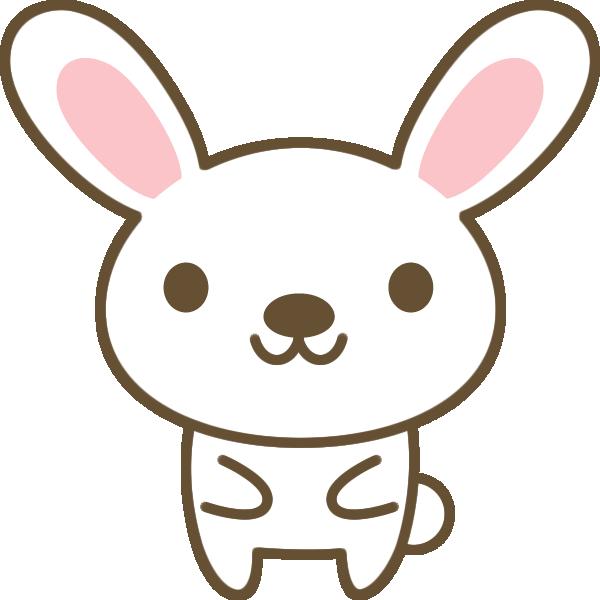 ウサギが立っている様子。