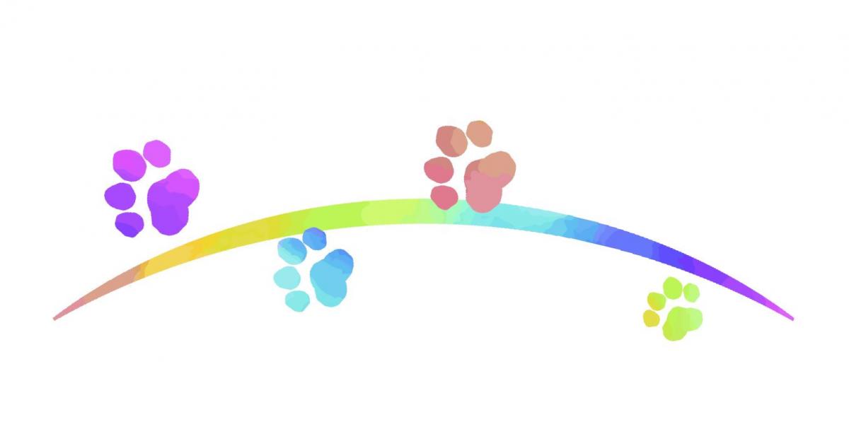 虹の橋を渡るペットの肉球。