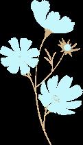 水色のお花。