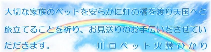 川口市のペット火葬・ペット葬儀 | 虹のかけ橋 南彩 …