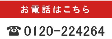スズメバチ駆除 近く 水戸市 すずめばち ハチ 駆除 業者 茨城県